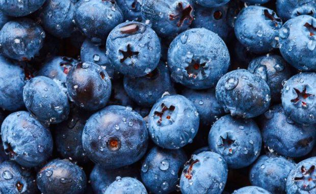2018 Blueberry Festival Vermont
